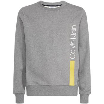 tekstylia Męskie Bluzy Calvin Klein Jeans K10K103943 Szary