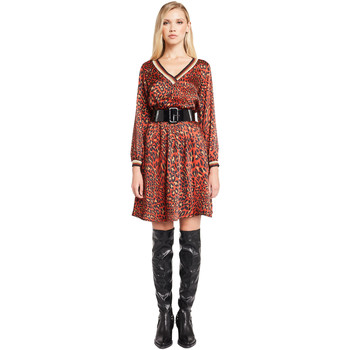 tekstylia Damskie Sukienki krótkie Denny Rose 921ND15008 Czerwony