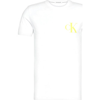 tekstylia Męskie T-shirty z krótkim rękawem Calvin Klein Jeans J30J315175 Biały