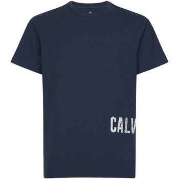 tekstylia Męskie T-shirty z krótkim rękawem Calvin Klein Jeans 00GMH9K287 Niebieski