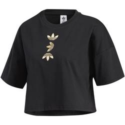 tekstylia Damskie T-shirty z krótkim rękawem adidas Originals FS7232 Czarny