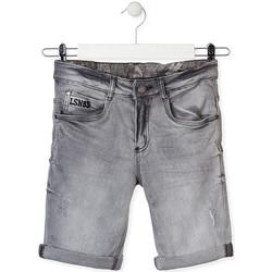 tekstylia Dziecko Szorty i Bermudy Losan 013-9002AL Szary