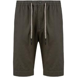 tekstylia Męskie Kostiumy / Szorty kąpielowe Antony Morato MMSH00155 FA900121 Zielony