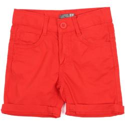 tekstylia Dziecko Szorty i Bermudy Losan 015-9655AL Czerwony