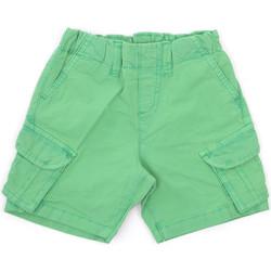 tekstylia Dziecko Szorty i Bermudy Melby 20G7250 Zielony