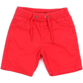 tekstylia Dziecko Szorty i Bermudy Losan 015-9657AL Czerwony
