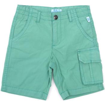 tekstylia Dziecko Szorty i Bermudy Melby 79G5584 Zielony