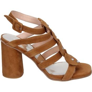 Buty Damskie Sandały Sergio Cimadamore Sandały BK866 Brązowy