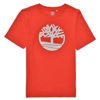 tekstylia Chłopiec T-shirty z krótkim rękawem Timberland LOLLA Czerwony