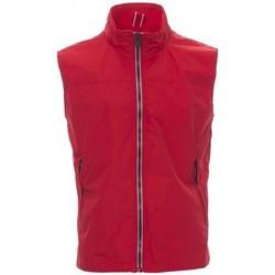 tekstylia Męskie Swetry rozpinane / Kardigany Payper Wear Sweatshirt Payper Horizon R. 2.0 rouge