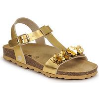 Buty Dziewczynka Sandały Citrouille et Compagnie KAPIBA Złoty