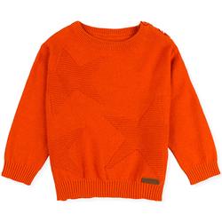 tekstylia Dziecko Swetry Losan 027-5653AL Pomarańczowy
