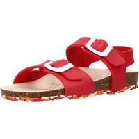 Buty Dziewczynka Sandały Garvalin 202663 Czerwony