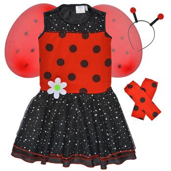 tekstylia Dziewczynka Kostiumy Fun Costumes COSTUME ENFANT BIRDIE BEETLE Wielokolorowy