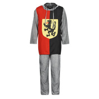 tekstylia Męskie Kostiumy Fun Costumes COSTUME ADULTE SIR GAWAIN Wielokolorowy