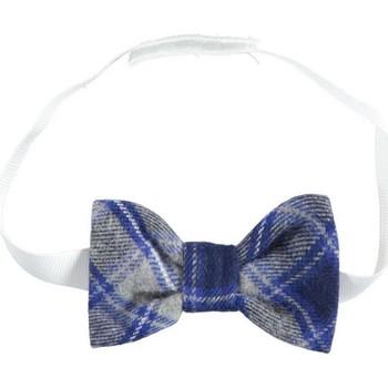tekstylia Chłopiec Krawaty i akcesoria  Ido 4K112 Wielokolorowy