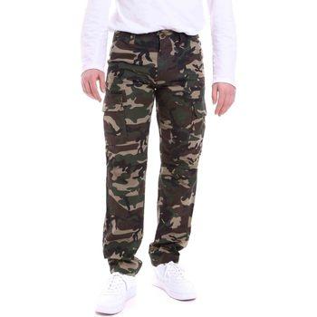 tekstylia Męskie Spodnie Dickies DK121121CF01 Zielony