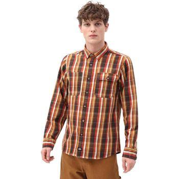 tekstylia Męskie Koszule z długim rękawem Dickies DK0A4X5LBD01 Brązowy