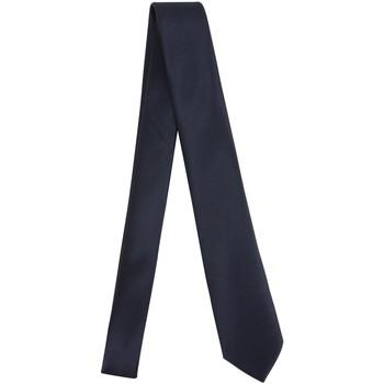 tekstylia Męskie Krawaty i akcesoria  Manuel Ritz 3030K502-213352 Niebieski