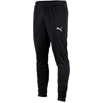tekstylia Męskie Spodnie dresowe Puma Pantalon  Teamrise poly training noir