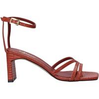 Buty Damskie Sandały Grace Shoes 395002 Brązowy
