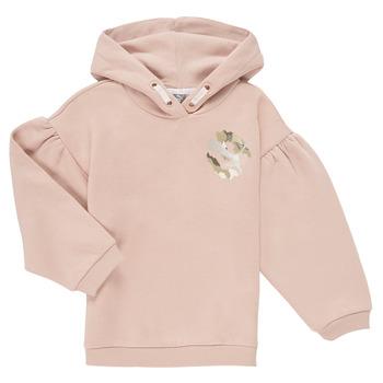 tekstylia Dziewczynka Bluzy Puma ALPHA HOODIE Różowy