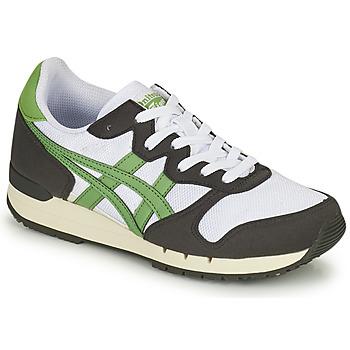 Buty Trampki niskie Onitsuka Tiger ALVARADO Zielony / Czarny / Biały