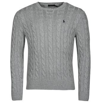 tekstylia Męskie Swetry Polo Ralph Lauren SERINA Szary