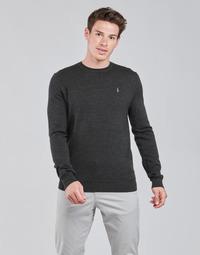 tekstylia Męskie Swetry Polo Ralph Lauren AMIRAL Szary