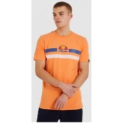 tekstylia Męskie T-shirty z krótkim rękawem Ellesse CAMISETA CORTA HOMBRE  SHI09758 Pomarańczowy