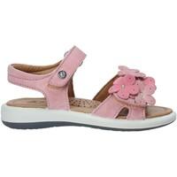 Buty Dziewczynka Sandały Naturino 502555 03 Różowy