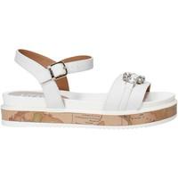 Buty Dziewczynka Sandały Alviero Martini 0575 0326 Biały