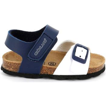 Buty Dziecko Sandały Grunland SB1892 Niebieski