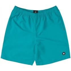 tekstylia Chłopiec Kostiumy / Szorty kąpielowe DC Shoes BAÑADOR PISCINA NIÑO DC EDBWS03069 Zielony