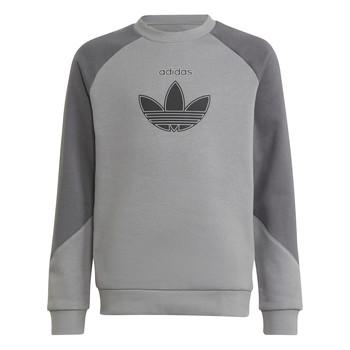 tekstylia Dziecko Bluzy adidas Originals DREZZ Szary