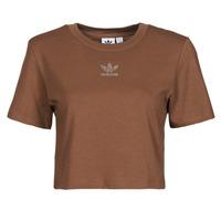 tekstylia Damskie T-shirty z krótkim rękawem adidas Originals CROPPED  TEE Brązowy