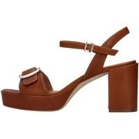Buty Damskie Sandały Tres Jolie 2084/NORA Brązowy