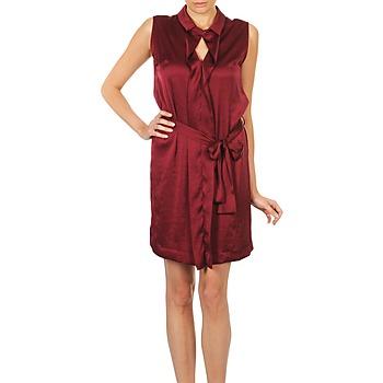 tekstylia Damskie Sukienki krótkie Lola ROSE ESTATE Bordeaux