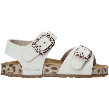 Buty Dziecko Sandały Grunland SB1648 Beżowy
