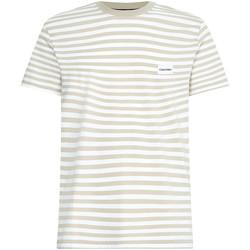 tekstylia Męskie T-shirty z krótkim rękawem Calvin Klein Jeans K10K107288 Beżowy