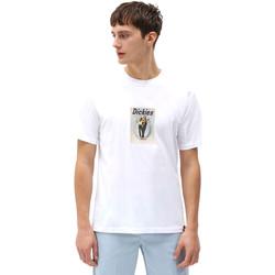 tekstylia Męskie T-shirty z krótkim rękawem Dickies DK0A4X9IWHX1 Biały