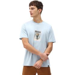 tekstylia Męskie T-shirty z krótkim rękawem Dickies DK0A4X9IB551 Niebieski