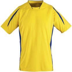 tekstylia Dziecko T-shirty z krótkim rękawem Sols Maracana - CAMISETA NIÑO MANGA CORTA Amarillo