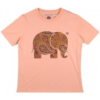 tekstylia Damskie Koszule Trendsplant CAMISETA MUJER  029970WPTP Pomarańczowy