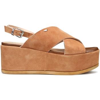 Buty Damskie Sandały Alberto Guardiani AGW003001 Brązowy
