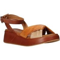 Buty Damskie Sandały Sshady L2401 Brązowy