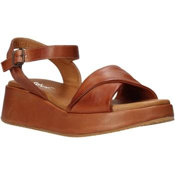Buty Damskie Sandały Sshady L2402 Brązowy