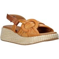 Buty Damskie Sandały Sshady L2406 Brązowy
