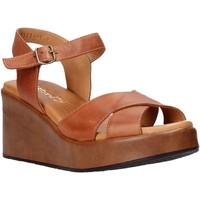 Buty Damskie Sandały Sshady L2503 Brązowy
