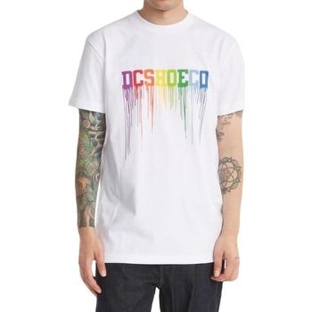 tekstylia Męskie Topy na ramiączkach / T-shirty bez rękawów DC Shoes Dc Drip Biały